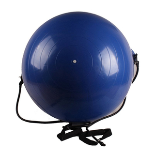 Gym Ball with Resistance Band